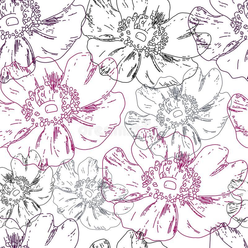 Dogrose seamless pattern royalty free stock images