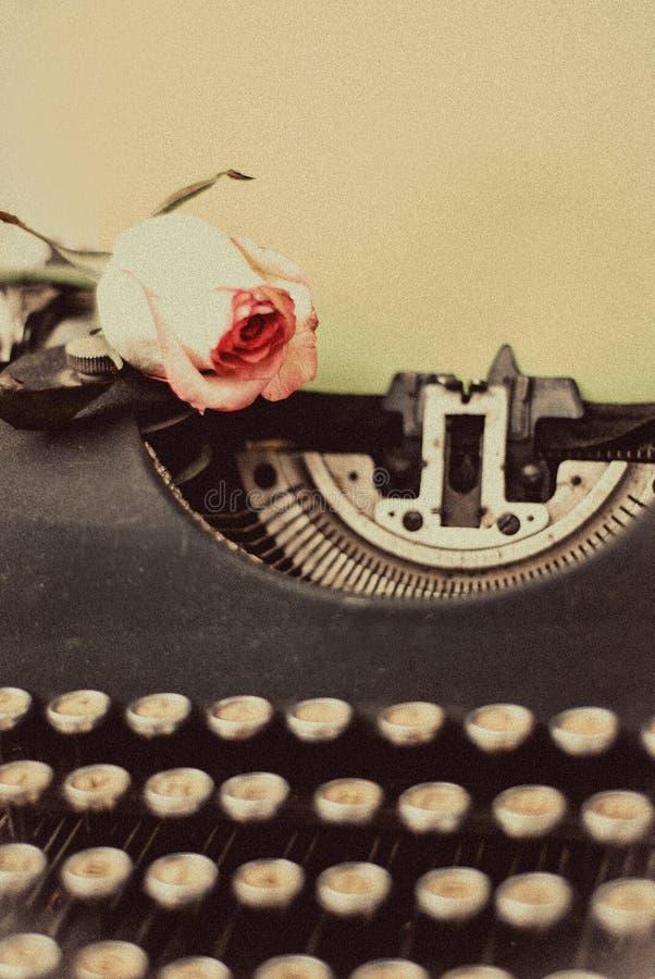 Rose fraîche de rose sur la machine à écrire de vintage avec la page vide, rétro modifié la tonalité photos stock