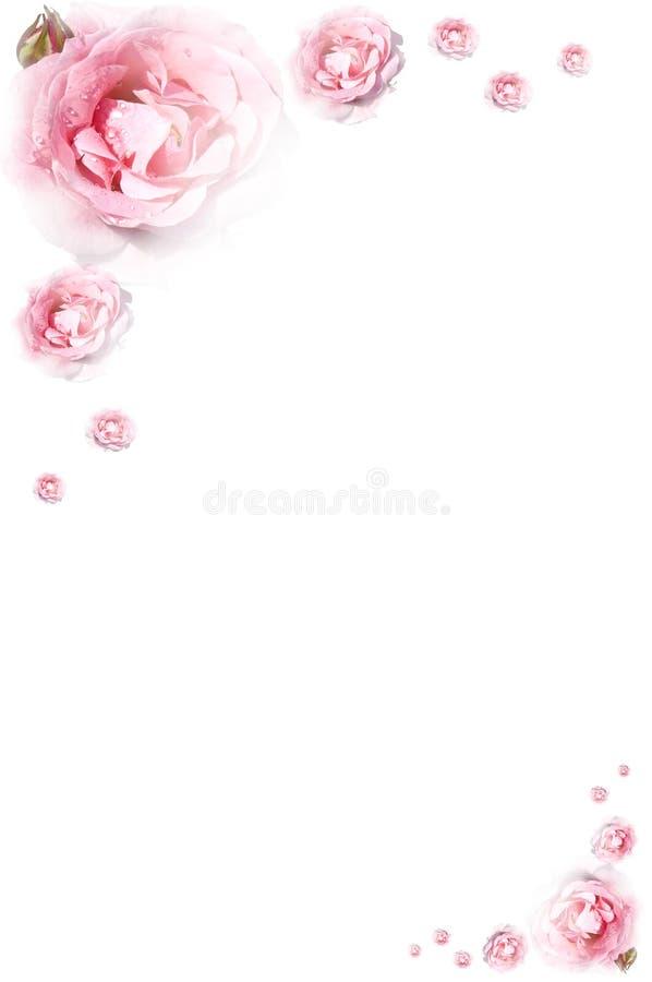 Rose frame royalty free stock photos