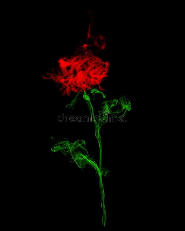 Rose fumeuse de rouge photographie stock libre de droits