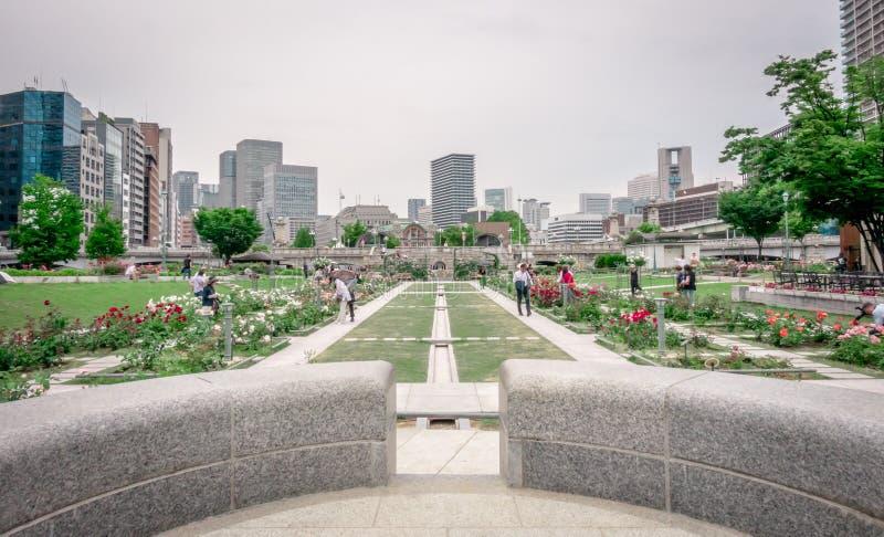 Rose Garden της Οζάκα Nakanoshima κοντά στην αίθουσα πόλεων της Οζάκα στοκ φωτογραφίες με δικαίωμα ελεύθερης χρήσης