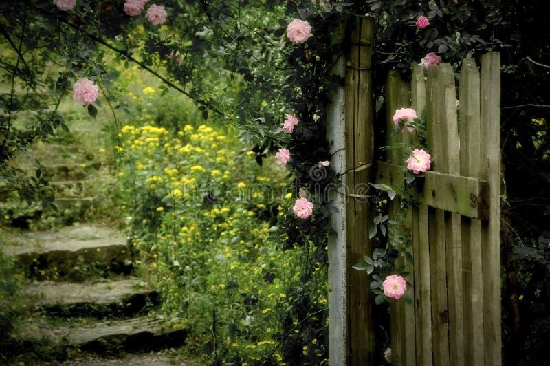 Rose Garden photo libre de droits