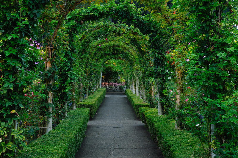 Rose garden arches and path royalty free stock images