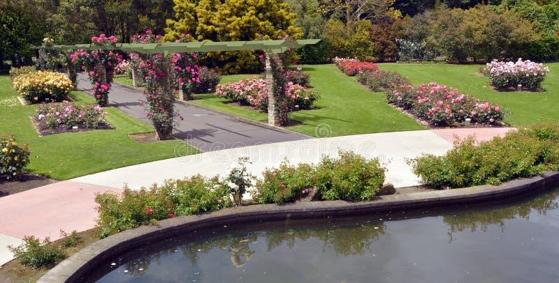 Rose Garden av Palmerston norr NZL arkivbilder