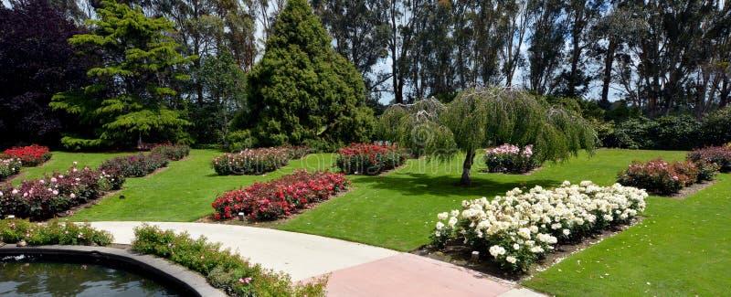 Rose Garden av Palmerston norr NZL royaltyfria bilder