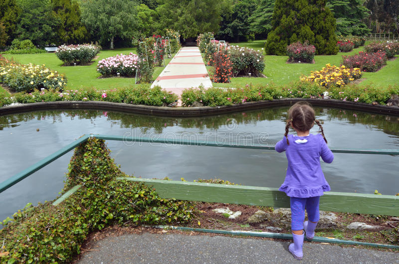 Rose Garden av Palmerston norr NZL arkivbild
