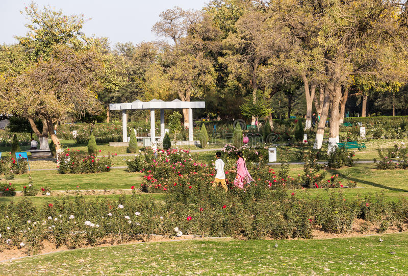 Rose Garden of Chandigarh. The city of Chandigarh, India, has been deigned by Le Corbusier. The rose garden is one of the spacious green areas , that are part of royalty free stock images