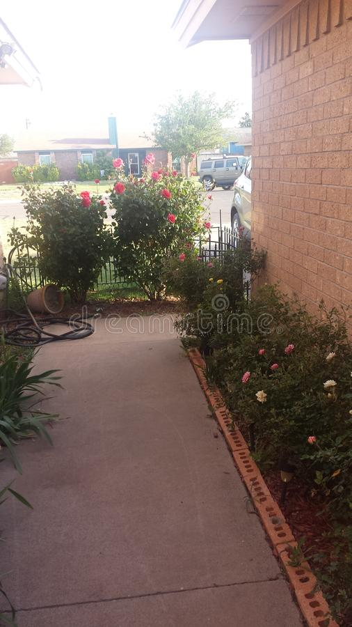 Rose Garden gångbana royaltyfri bild