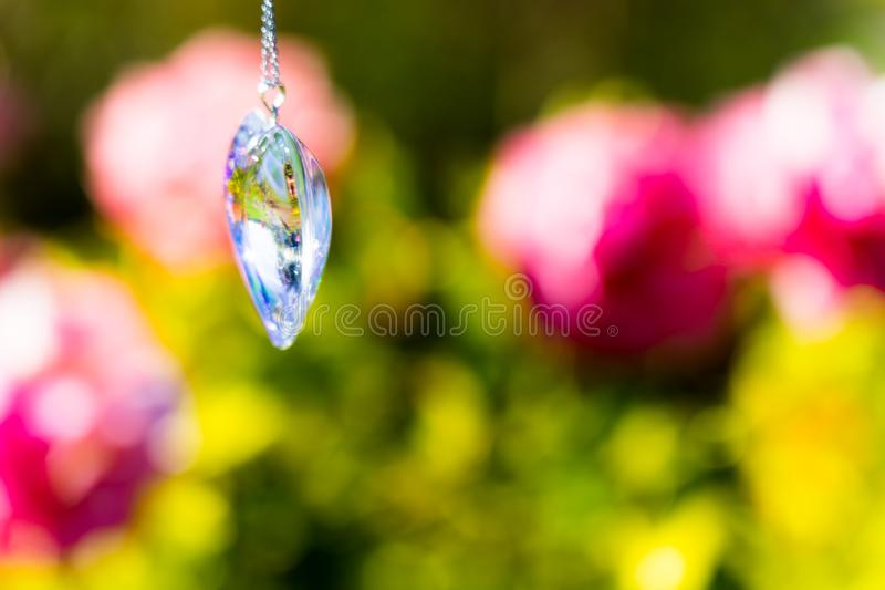 Heart crystal glass refract sunlight - rose garden background. AT 1/4/2019 in Rose garden royalty free stock photography