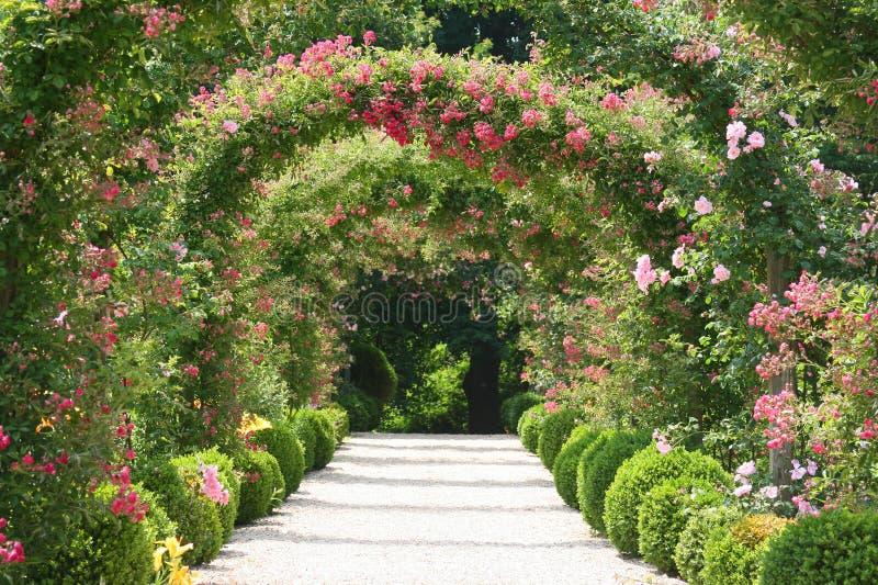 Rose Garden Landscape stock photo