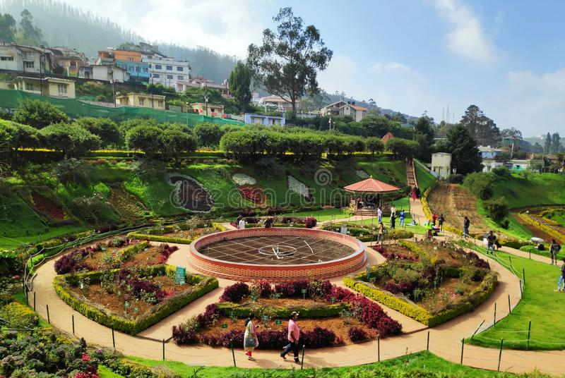 Rose Garden Ooty, Tamilnadu, India. This picture is taken in Rose Garden Ooty, Tamilnadu, India. This is one of the best stock photo