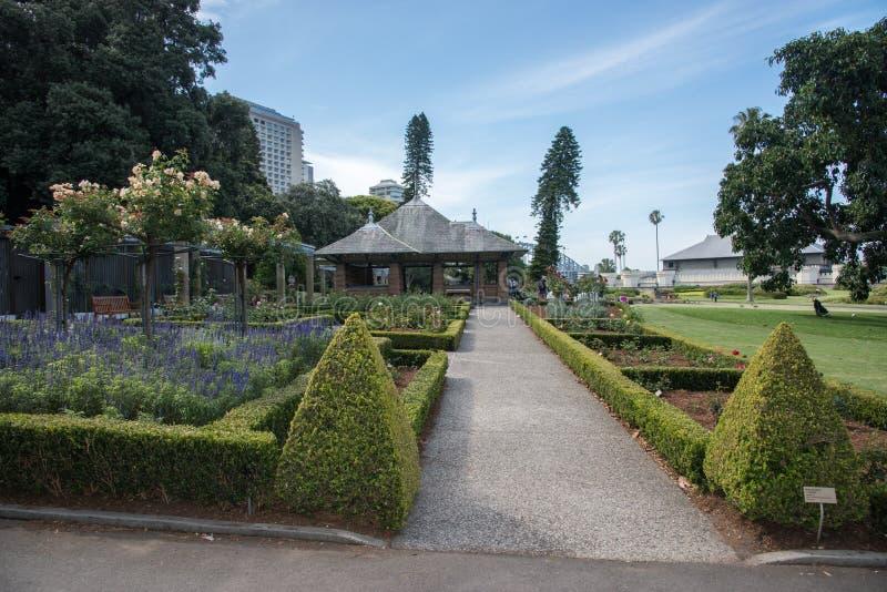 Rose Garden in Sydney royalty free stock photos