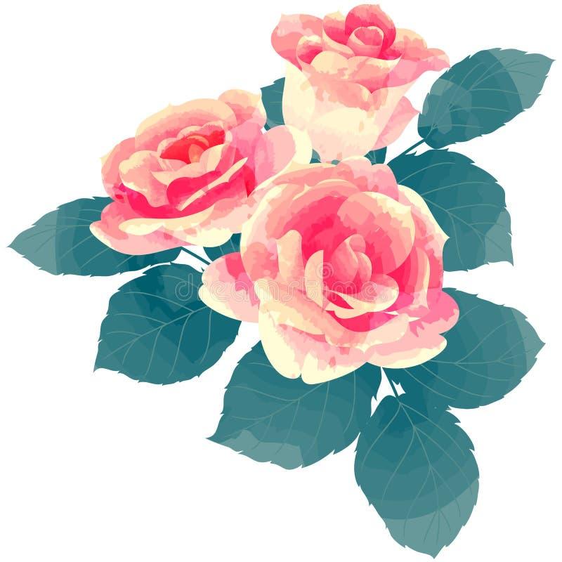 Rose - Geburtsblumen-Vektorillustration im Aquarellfarbentext stockbild