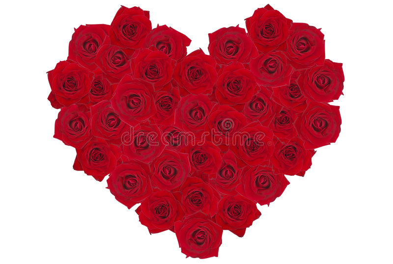 Download Rose-heart 2 stock image. Image of delight, decoration - 1012933
