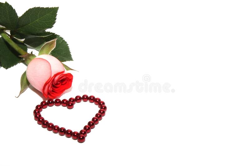 A rose and a heart made of red magnetic beads are isolated on white background royalty free stock image