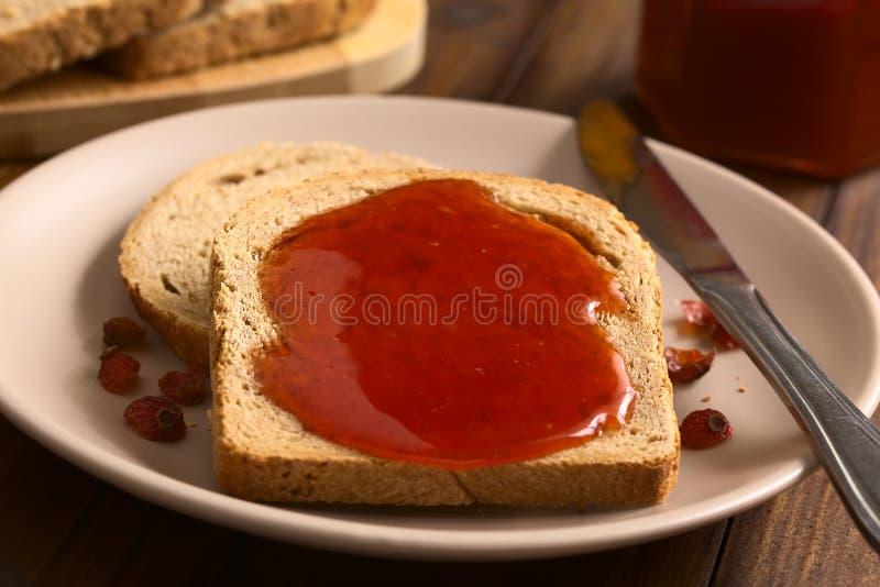 Rose Hip Jam sur le pain photos stock
