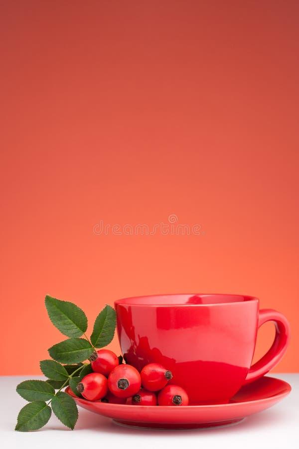 Download Rose Hip Tea Stock Photos - Image: 21445523