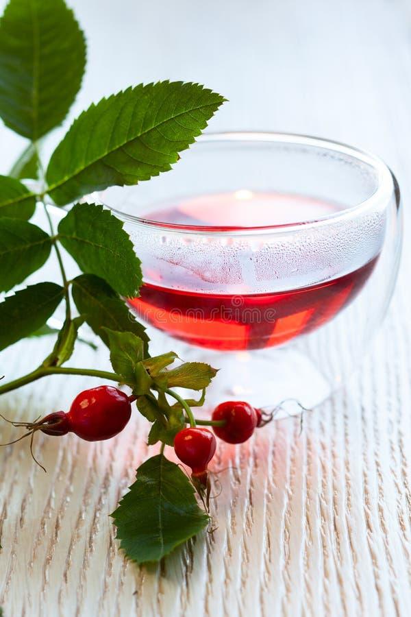 Rose hip tea stock photography