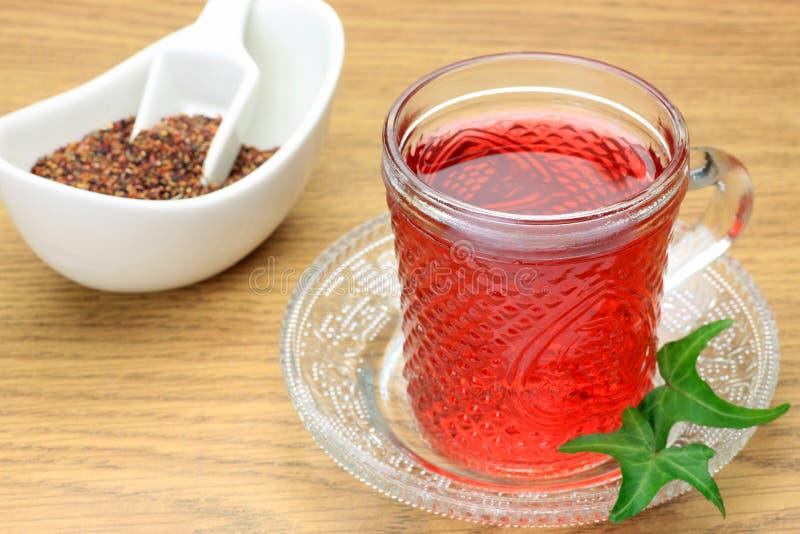 Download Rose Hips Tea Royalty Free Stock Image - Image: 24118986