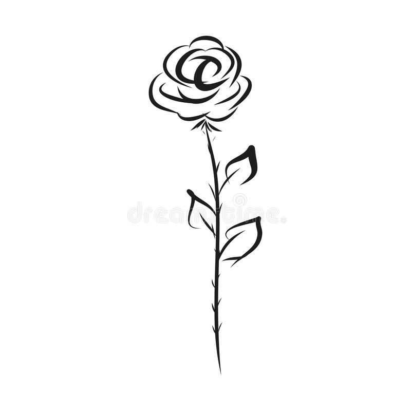 Rose icon hand drawing, vector illustration isolated on white background.  vector illustration