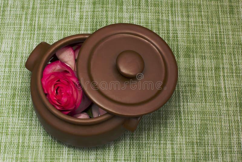 Rose im Tongefäß stockfoto