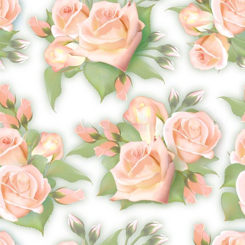 Rose inglesi senza cuciture Modello rosa dei seamles dell'annata rosa Vettore Imitattion dell'acquerello di qualità Non traccia illustrazione di stock