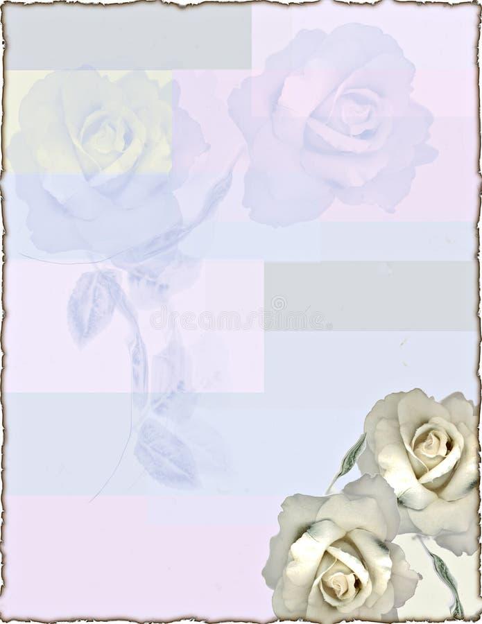 Rose inmóvil ilustración del vector