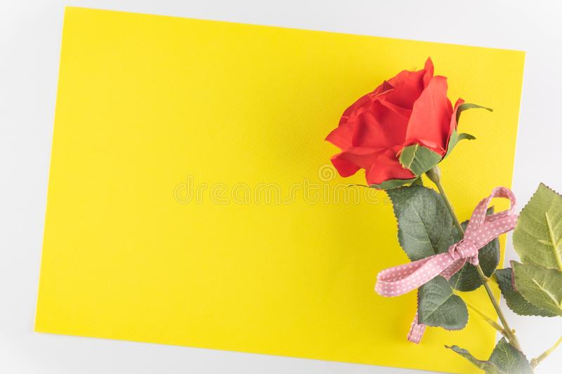 Rose isolated on yellow texture background, Happy valentine`s day. Rose on yellow texture background, Happy valentine`s day. holiday background, Flat lay, top royalty free stock photography