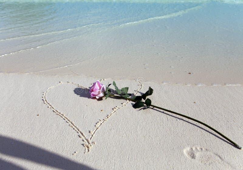 Rose liegt auf Sand im gezogenen Herzen und einem Schatten von der Hand, die sie geworfen hat stockfotografie