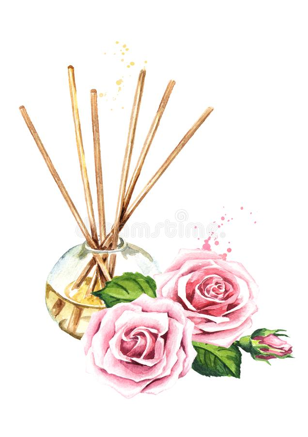 Rose liquid in a glass bottle with sticks and a flower. Freshener.  Watercolor hand drawn illustration, isolated on white royalty free illustration