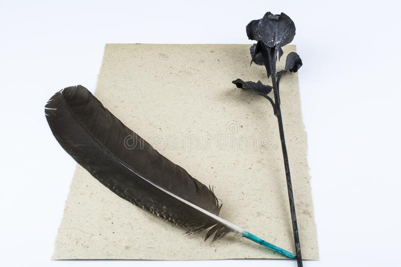 A rose made of metal and a dark feather lie on a clean sheet of paper isolated on white background. A black rose of metal and a dark feather lie on a clean sheet stock image