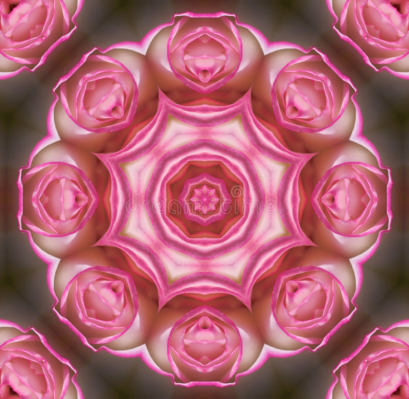 Download Rose mandala stock illustration. Illustration of pink, grey - 283988