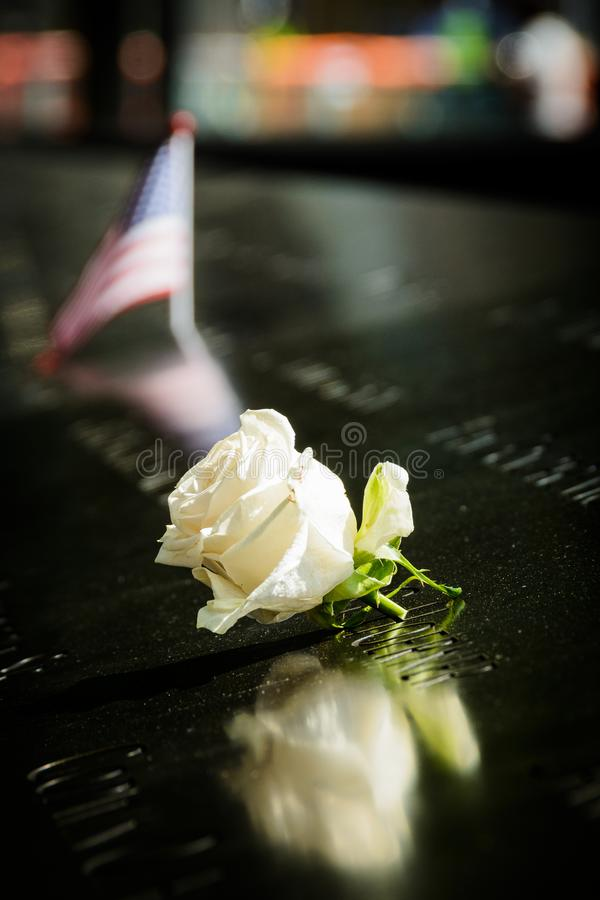 A rose at the 9/11 memorial, New York royalty free stock images