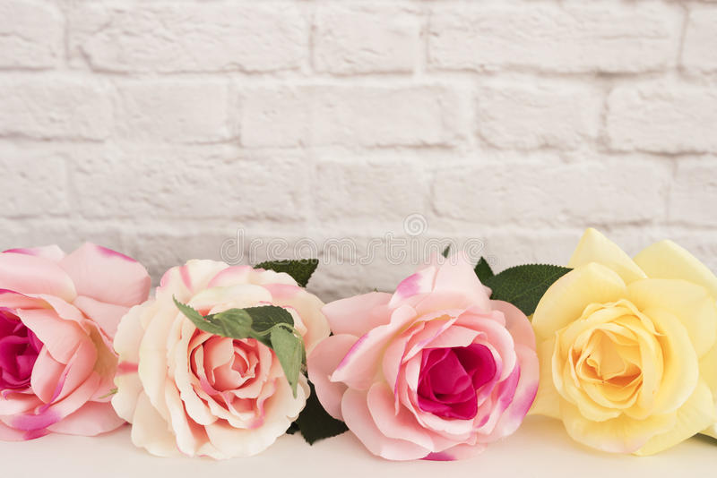 Rose Mock Up cor-de-rosa Fotografia conservada em estoque denominada Quadro floral, zombaria denominada da parede acima Rose Flow fotos de stock royalty free