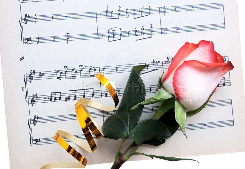 Rose on a musical paper stock photo