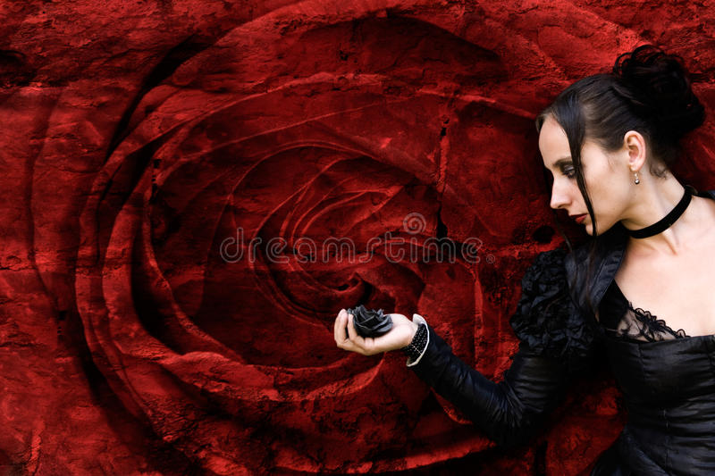 Rose noire photographie stock