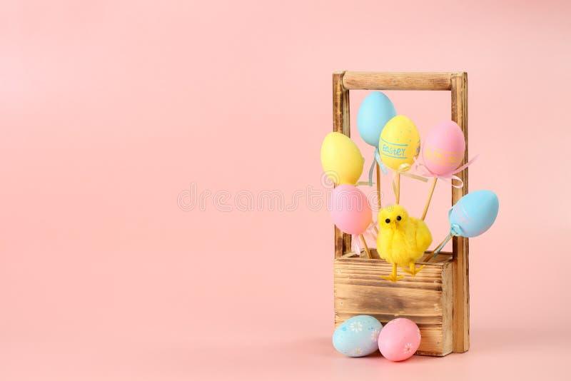 Rose, oeufs peints jaunes et bleus sur des bâtons et un poulet mignon dans un panier en bois pour des fleurs sur un fond rose Pâq images stock