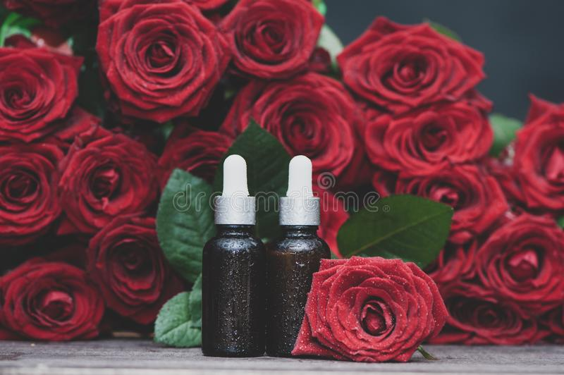 Rose oil, Bottles and fresh flower and leaves on a natural background, bio, organic , nature cosmetics stock photography