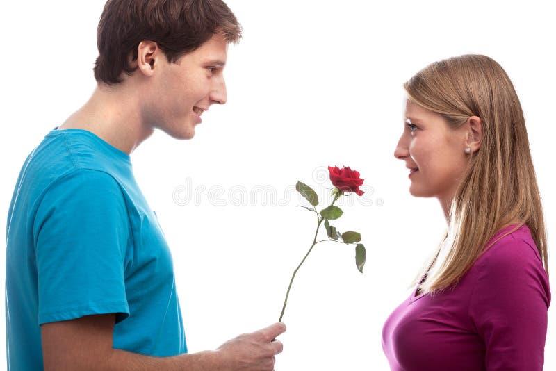 Rose para la novia fotos de archivo libres de regalías