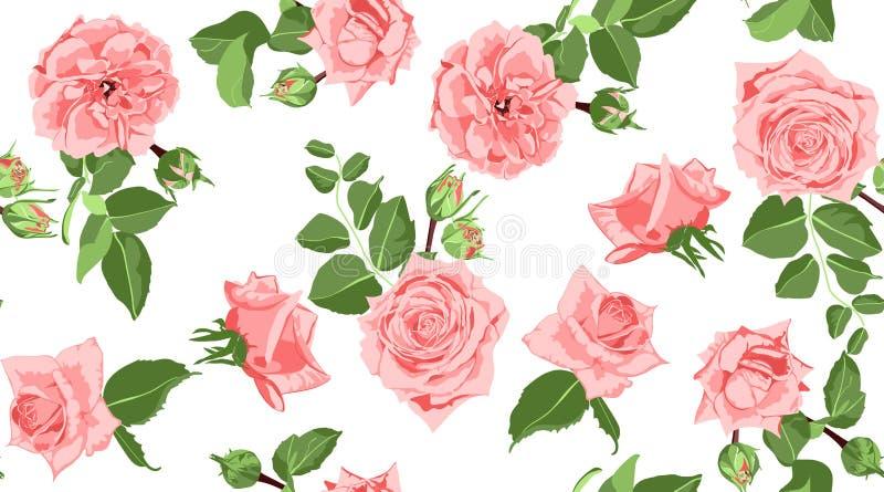 Rose Pattern floreale senza cuciture con le foglie illustrazione di stock