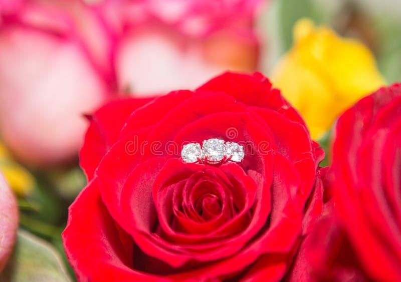Rose, pearl and diamond ring. Rose, rose petal, pearl and diamond ring stock photos