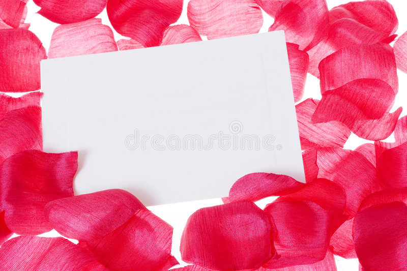 Download Rose pedal background stock photo. Image of backgrounds - 2305342