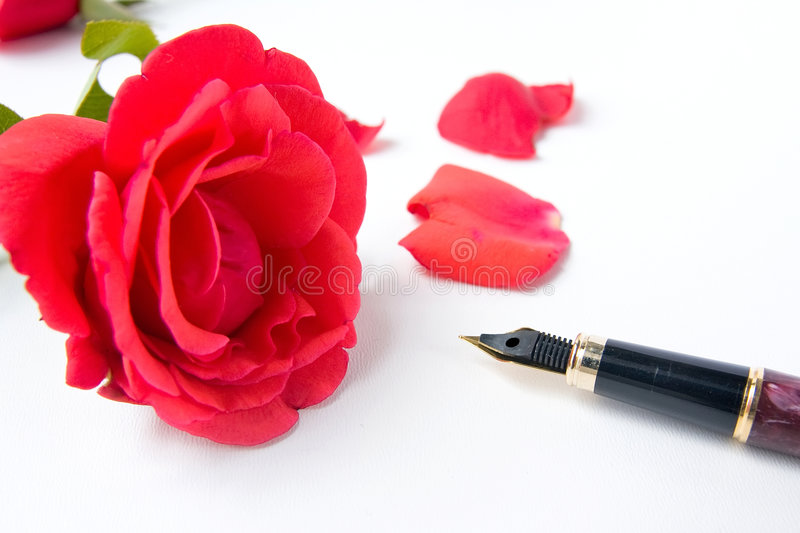 Rose and pen royalty free stock photography