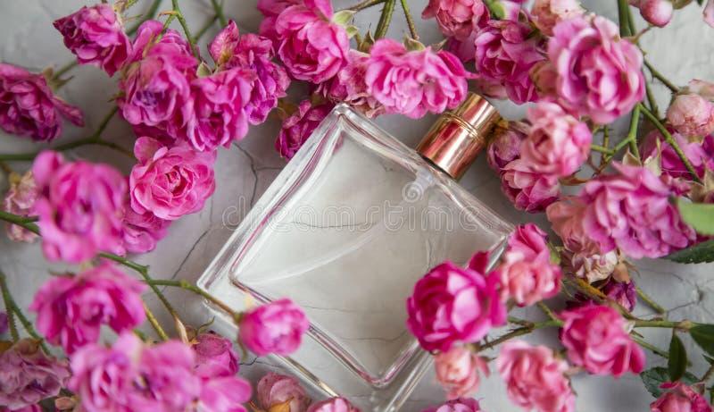 Rose Perfume Vista superior do perfume doce das rosas puras elegantes florais delicadas no vidro transparente imagens de stock royalty free