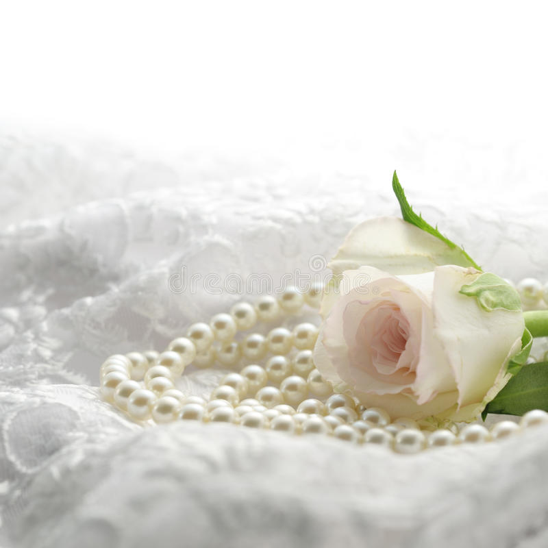 Download Rose and perl stock image. Image of flower, silk, lace - 22093989