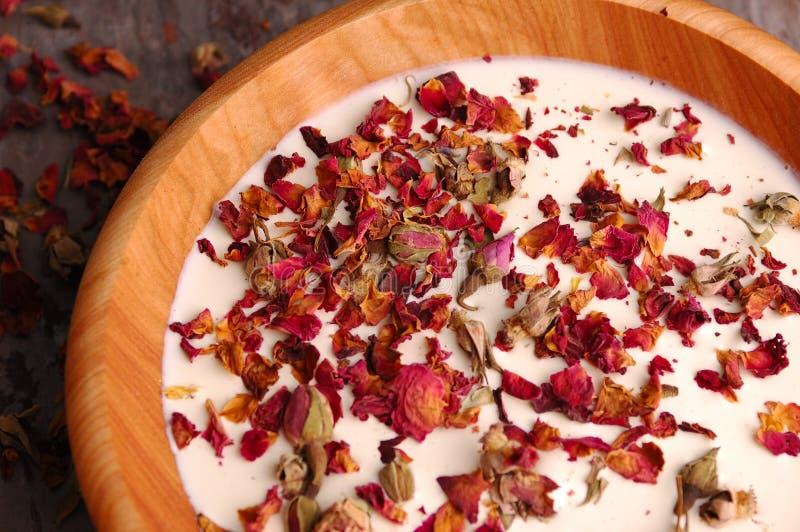 Rose Petal Spa (04) stock foto's