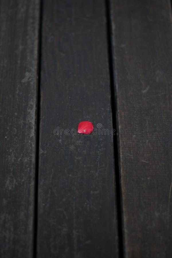 Rose Petal On Wood fotografia de stock royalty free