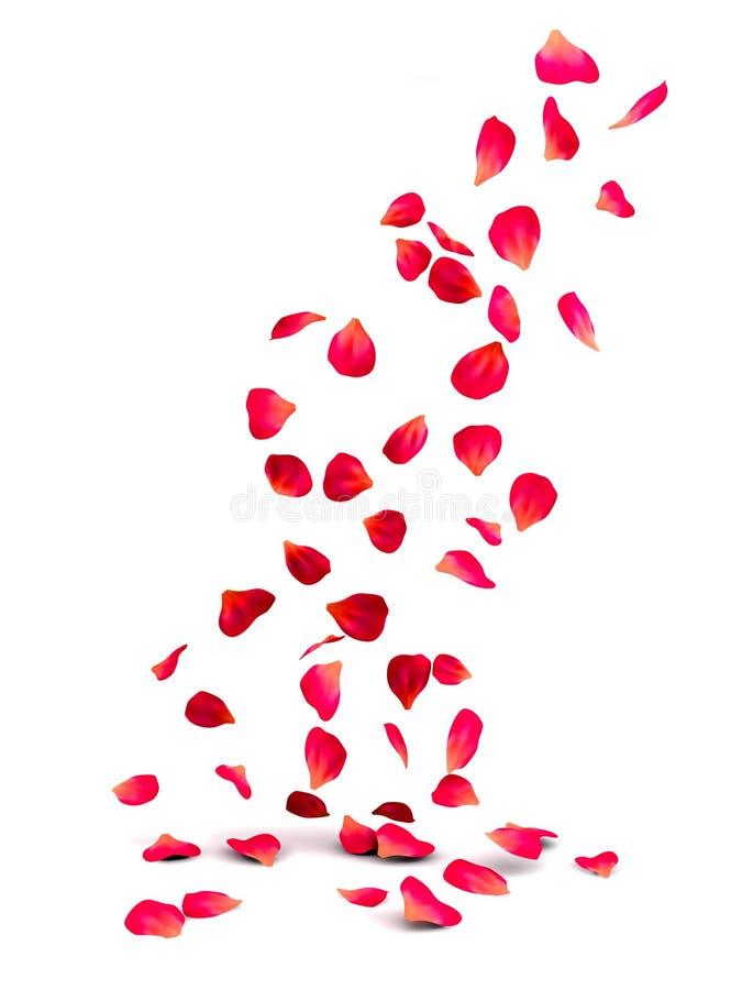 Rose Petals royalty free illustration