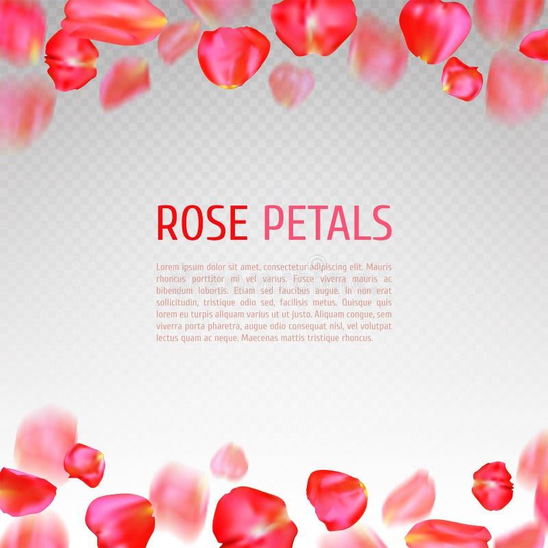 Rose Petals Border Stock Vector. Illustration Of Nature