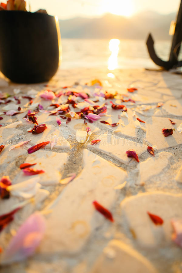 Rose petals on the floor. Wedding tradition of showering newlywe stock photo